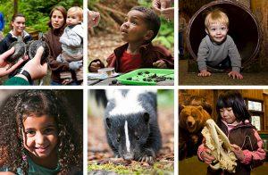 Kids N Critters @ NW Trek Wild Life Park | Eatonville | Washington | United States