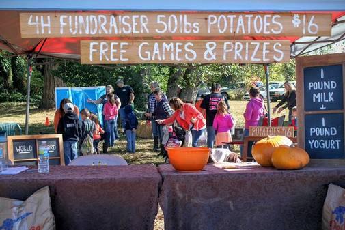 Onalaska Apple Harvest Festival